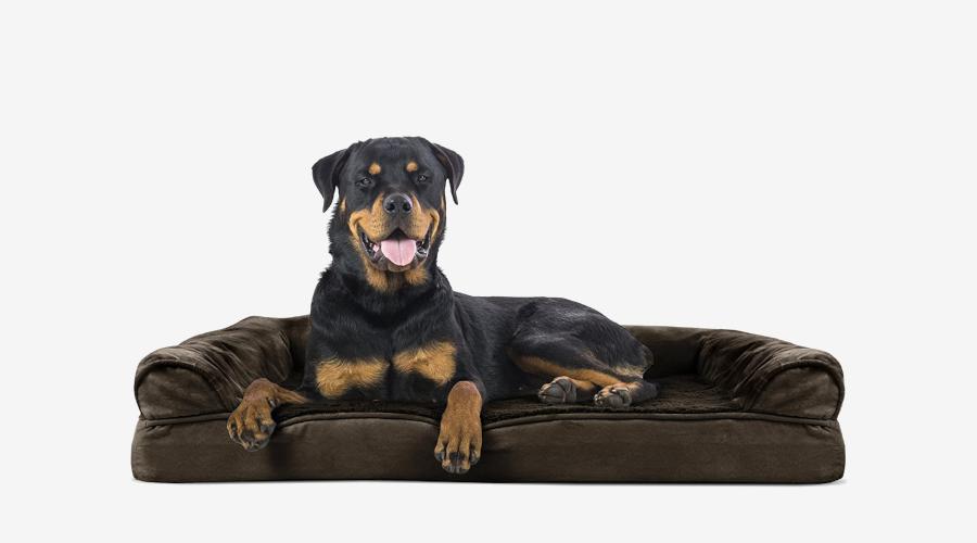 Furhaven Sofa Dog Bed