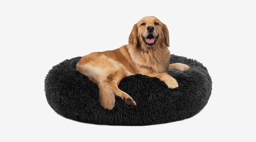 PUPPBUDD Donut Dog Bed